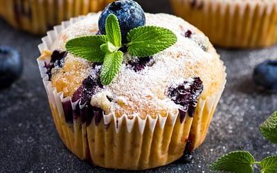Muffins au citron et aux myrtilles